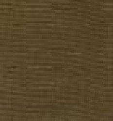 Brown20Bengaline 1612294927 - Bengaline