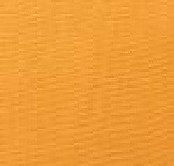 Mango20Bengaline 1612293303 - Bengaline