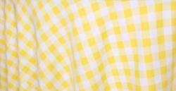 Yellow20picnic20check 1614369634 - Picnic Checker
