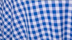 blue20picnic20check 1614369587 - Picnic Checker