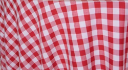 red20picnic20check 1614369618 - Picnic Checker
