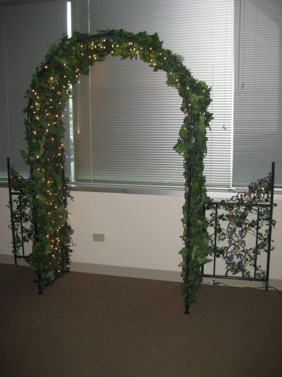 Grapevine Arch